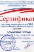 Берешвили Роман WRO-2015